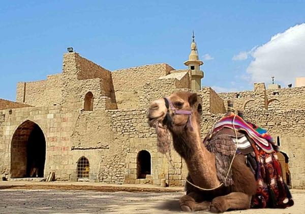 Jordania Castillos del Desierto 8 días Imagen 2