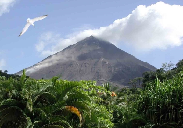 Costa Rica fácil Caribe 9 días Imagen 2