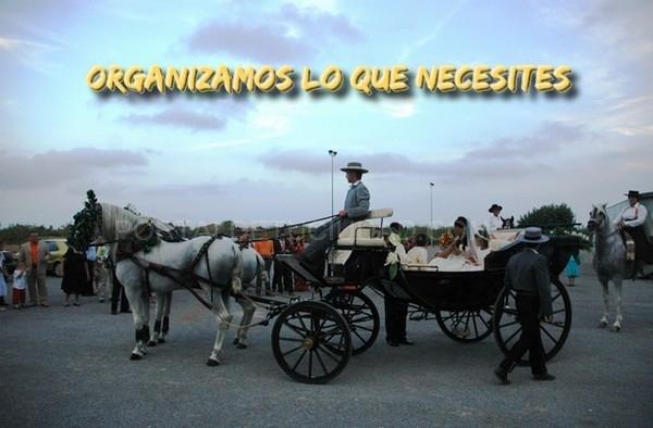 Coche de caballos para tu boda en Elche