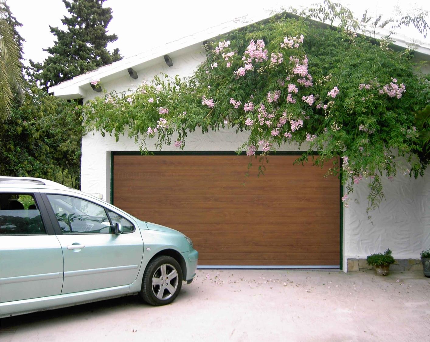 Puertas automáticas de garaje abatibles