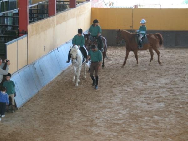 Clases de Equitación en Palencia