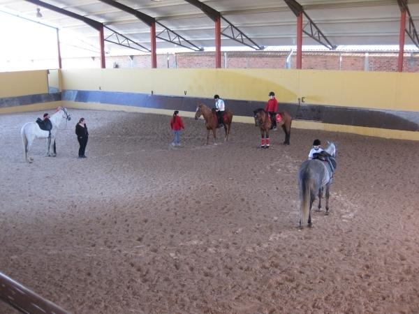 clases monta caballos palencia
