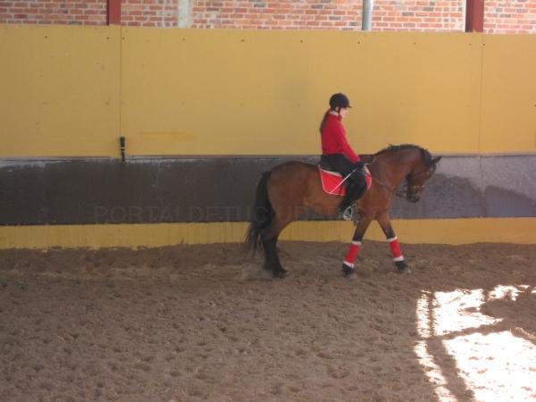 montar a caballo en palencia
