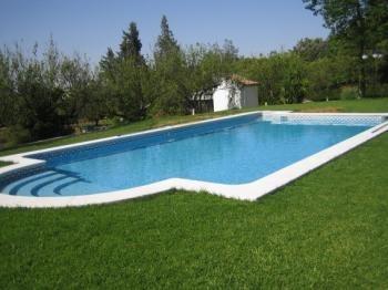 Recuperación vaso piscina Elche,vega baja.