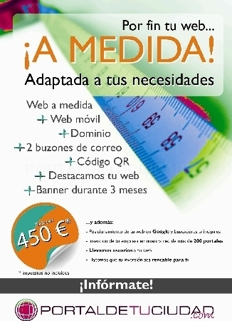 WEB BUSINESS A MEDIADA OPCION B