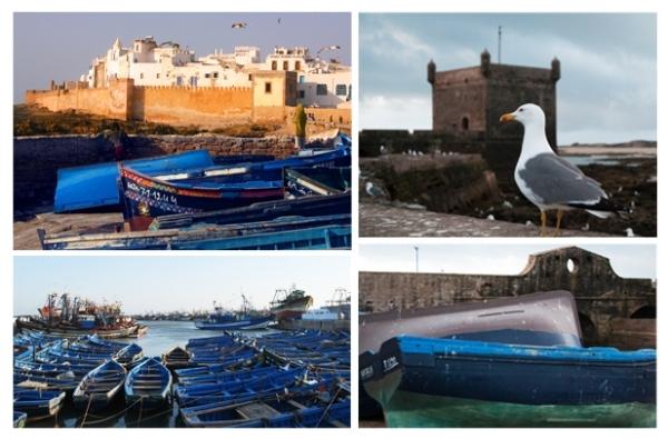 1 día: excursiones de un día desde Marrakech