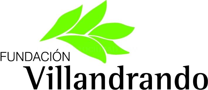 Fundación Villandrando: Documentos
