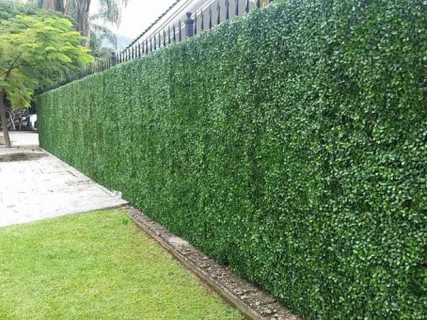 Muro verde o jardín vertical