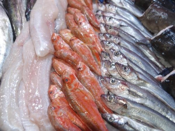 pescado fresco en Palencia