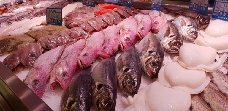 Pescadería en Palencia
