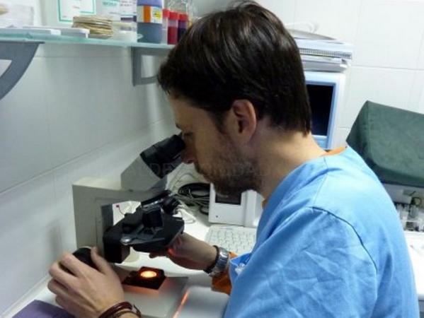 diagnóstico animales en Cáceres