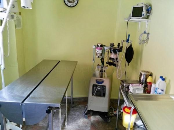 Cirugía para animales en Palencia
