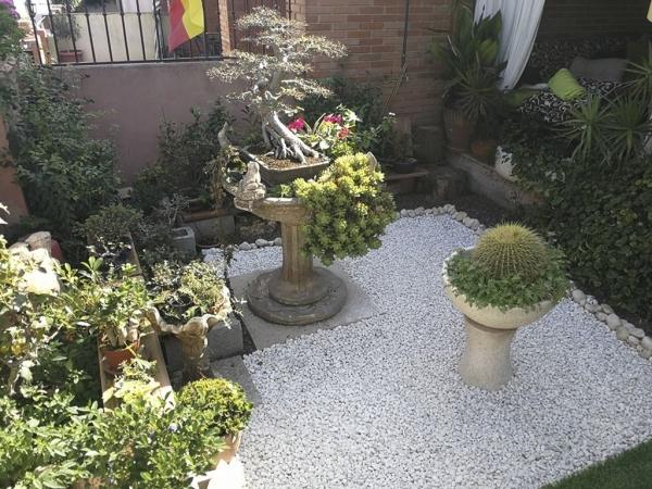 Tratamientos fitosanitarios en Torrevieja Orihuela