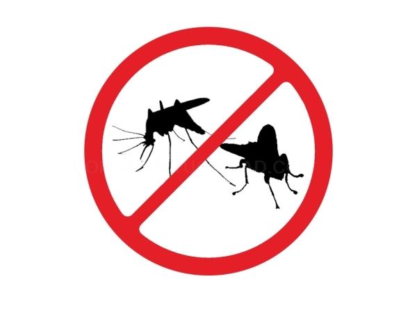 Control de Plagas Mosquitos y Moscas Elche