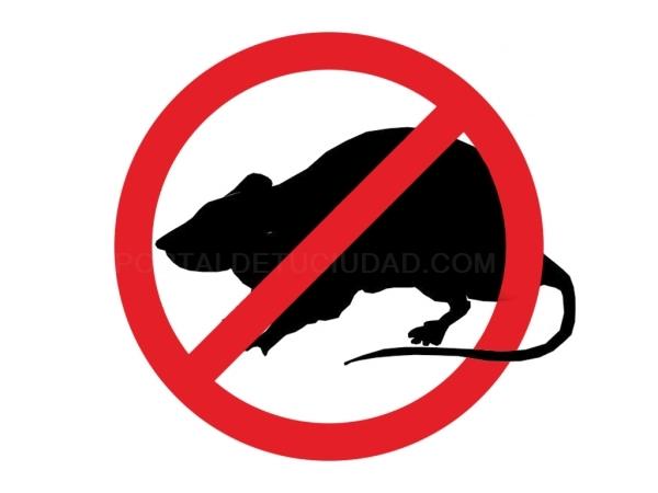 Control de Plagas Ratones y Ratas Alicante