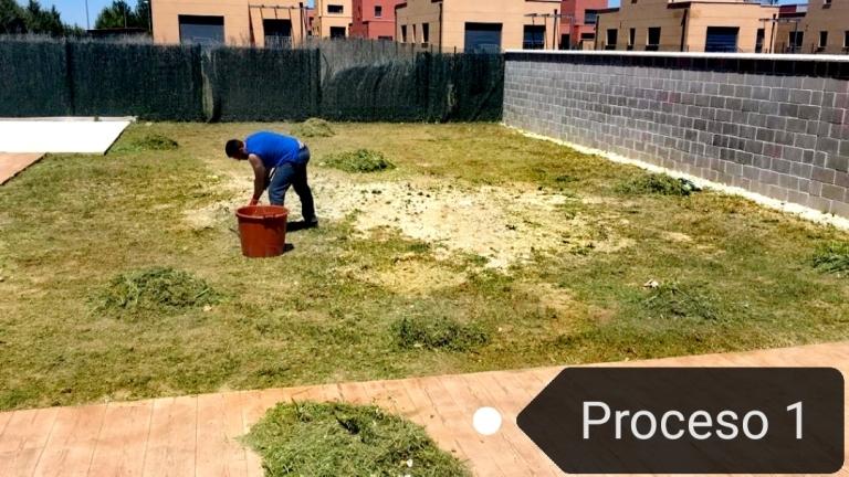 Trabajos de jardinería en Palencia