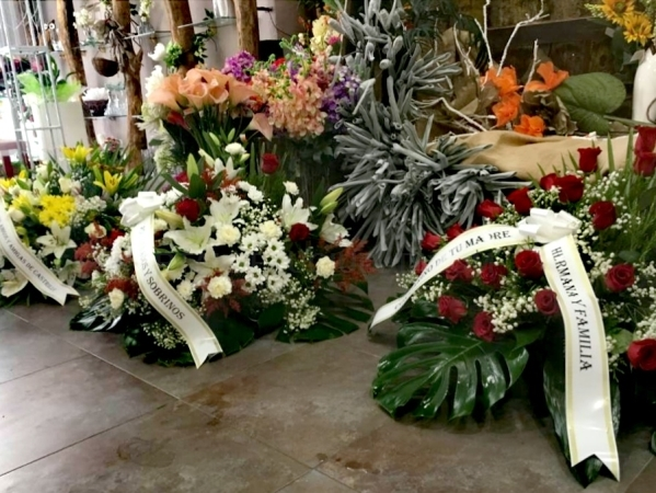 Centros funerarios en Palencia