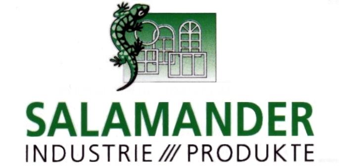 Salamander en Palencia