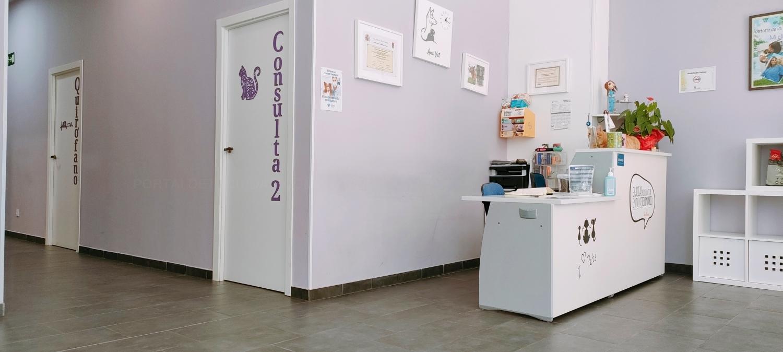 Clínica veterinaria en Palencia