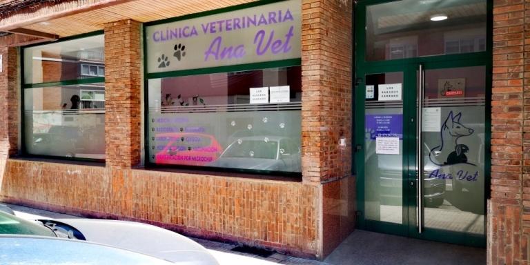 Castraciones o esterilizaciones en Palencia