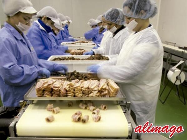 Distribución alimentos congelados en Alicante