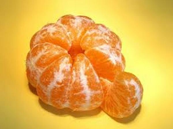 Mayorista de mandarinas