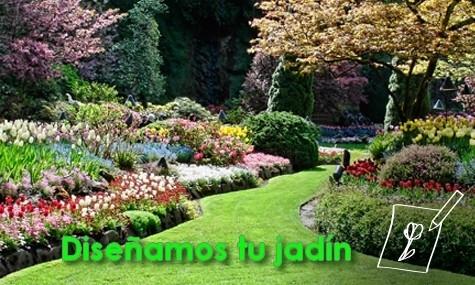 Diseño jardines Alicante Vega Baja Aspe