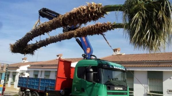 Alquiler de Camiones con Grúa en Cáceres