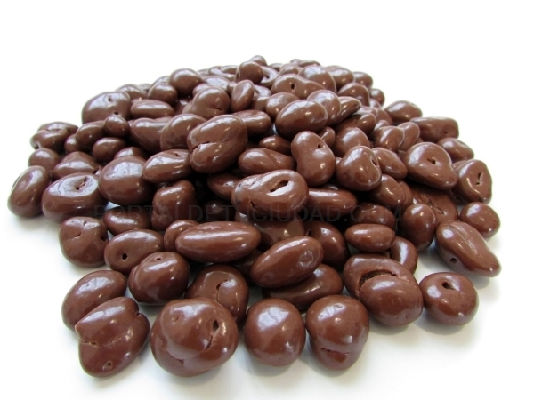 ARANDANOS CHOCOLATE