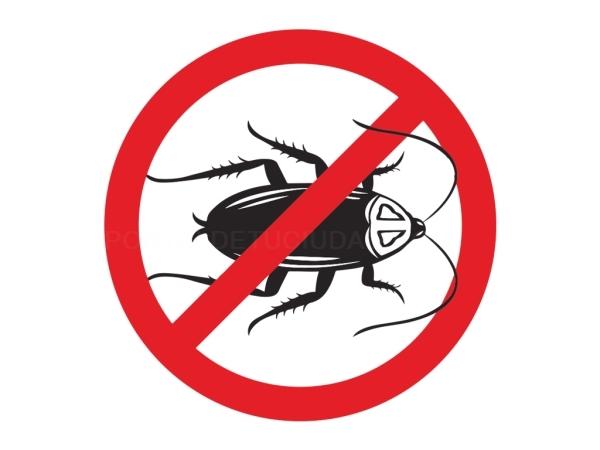 Control de Plagas Cucarachas Alicante Elche