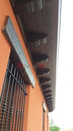 Canes de piedra artificial en Palencia