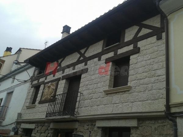 Canes en Palencia
