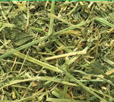 Alfalfa deshidratada extra