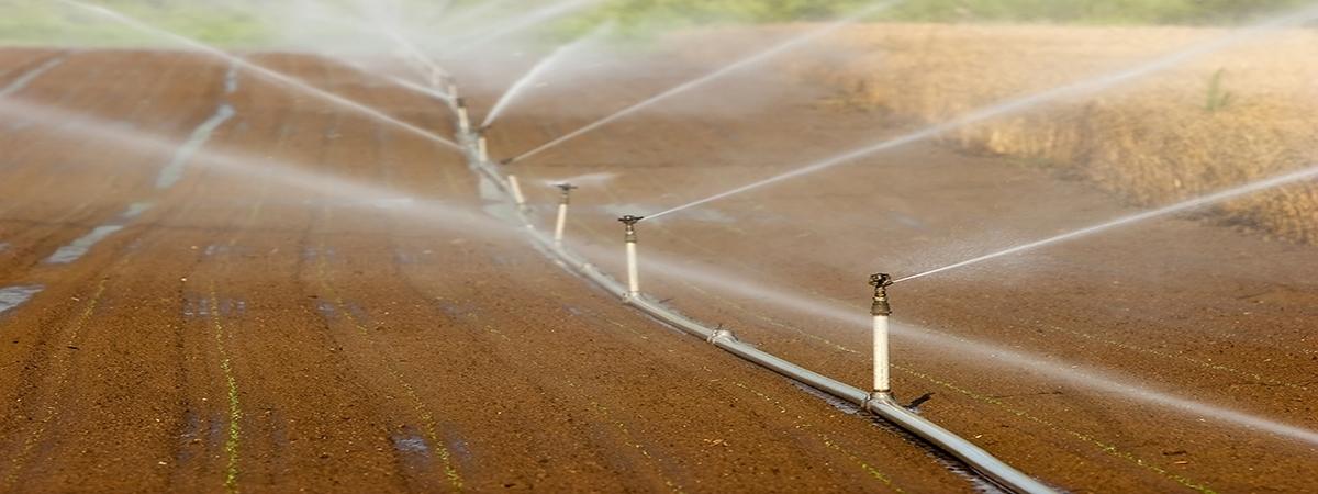 Sistemas de riego en Palencia